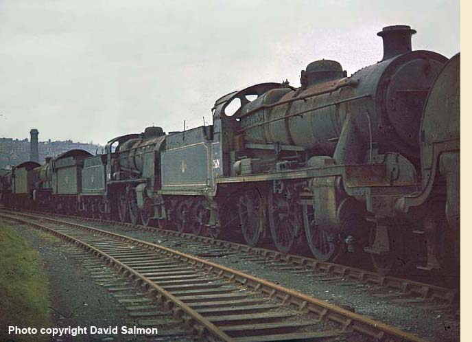 31806 at barry D-salmon